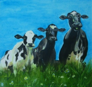 The Cows' Point of View