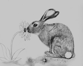 Bunny stops to smell flower 2